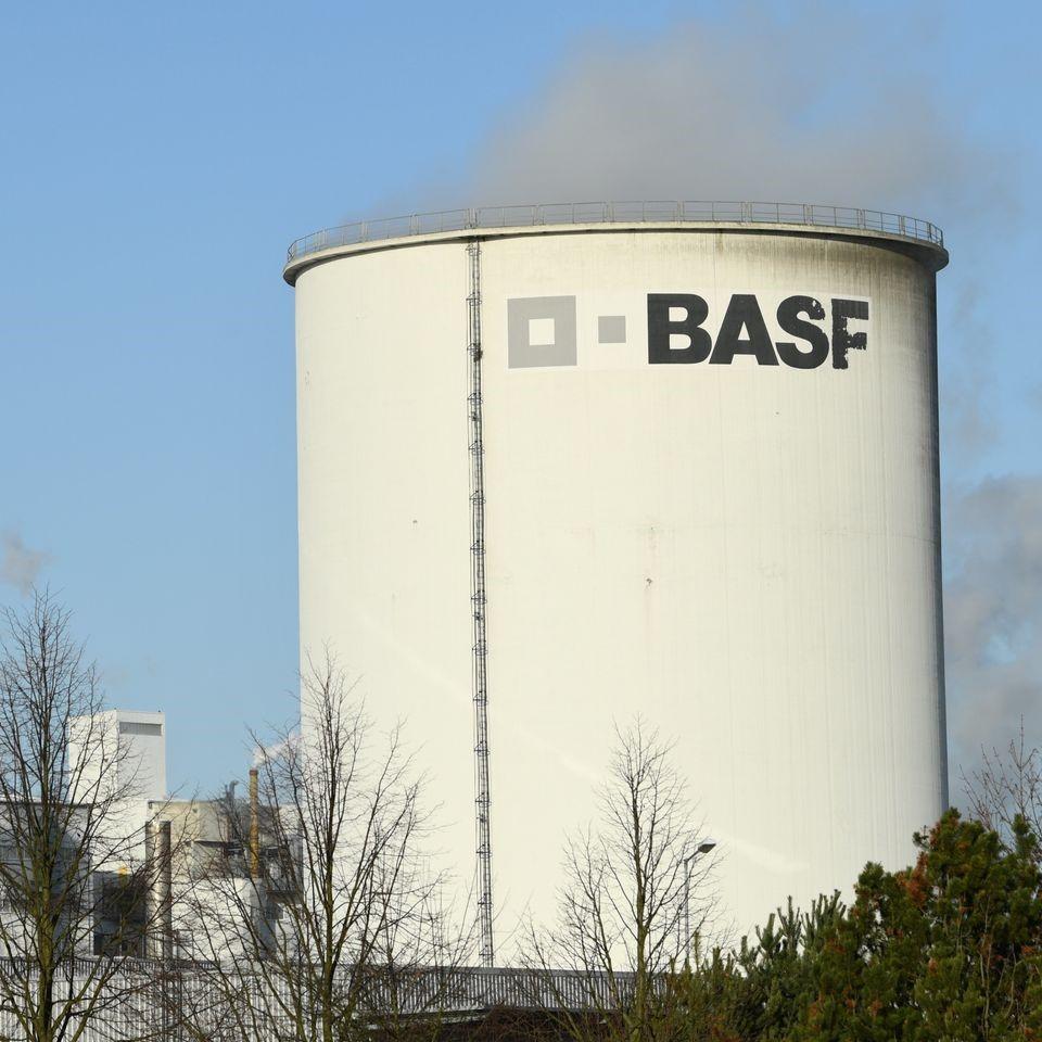 BASF 3a